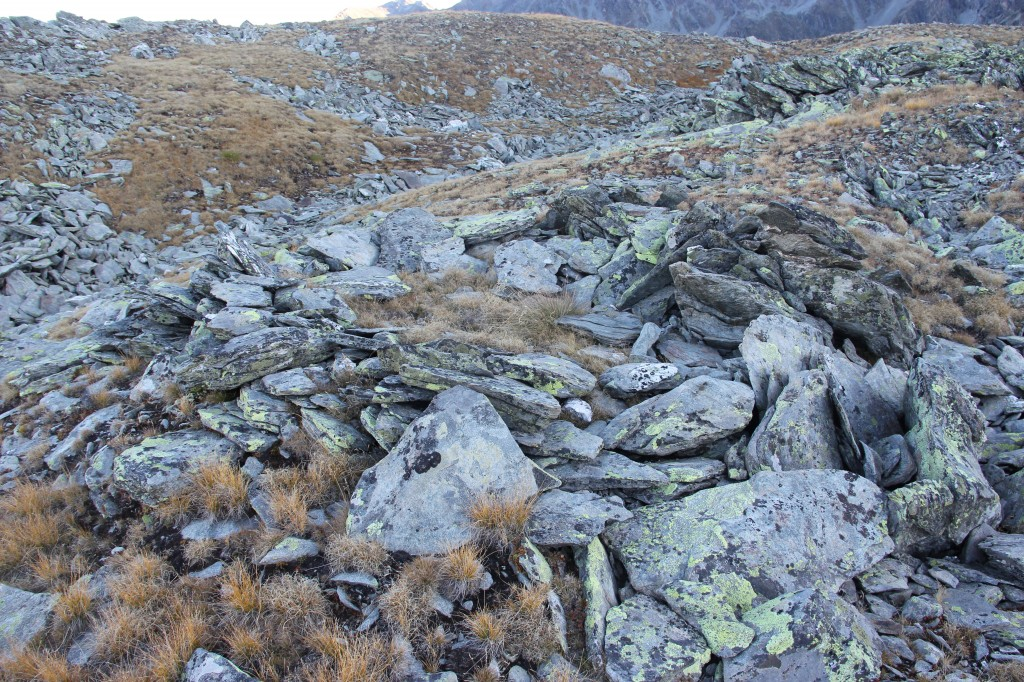 Fig. 2, Nouveau site inexploré, une des quinze cabanes repérées sur un sommet à près de 2800m d'altitude, © RAMHA 2019.